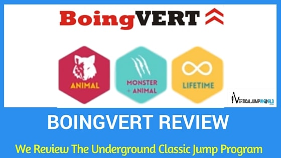 boingvert_reviews