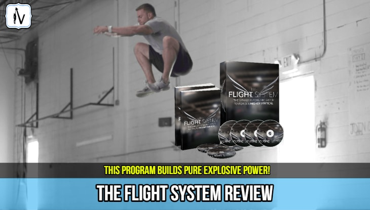 the_flight_system_review