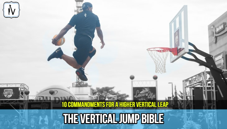 the_vertical_jump_bible