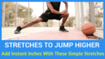 vertical jump exercises