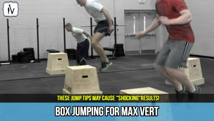 how to box jump for vertical jump height